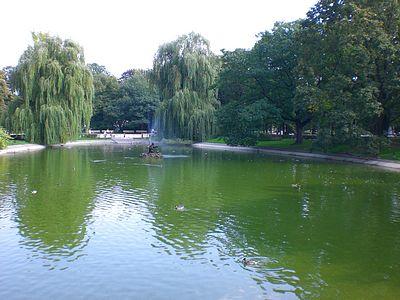 Saxon Gardens Lake
